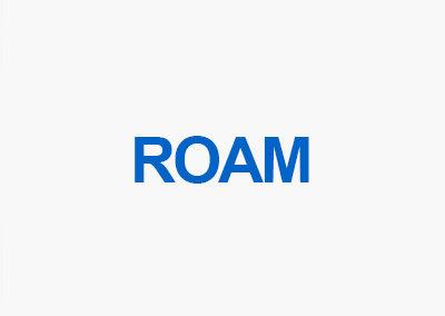 ROAM Segmentation